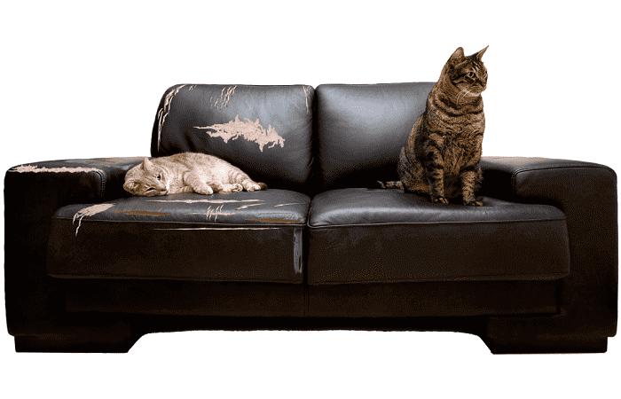 Ремонт дивана жидкой кожей