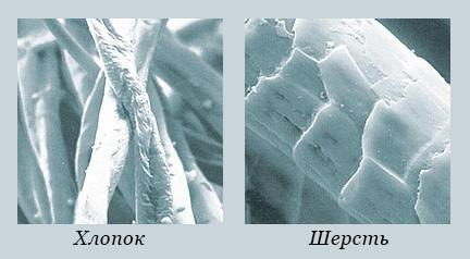 Хлопок и шерсть под микроскопом